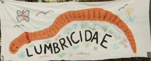 Lumbricidae