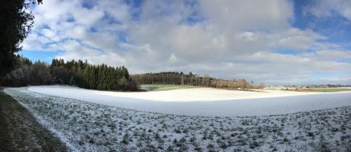 Hau_im_Schnee10