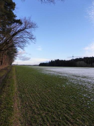 Hau_ohne_Schnee7