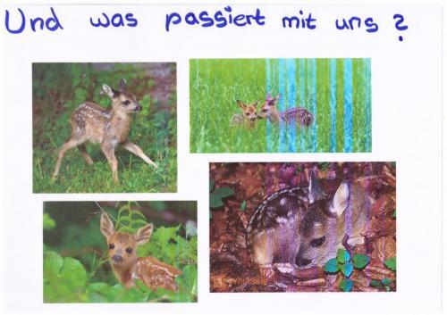 Pfosten_Bild7