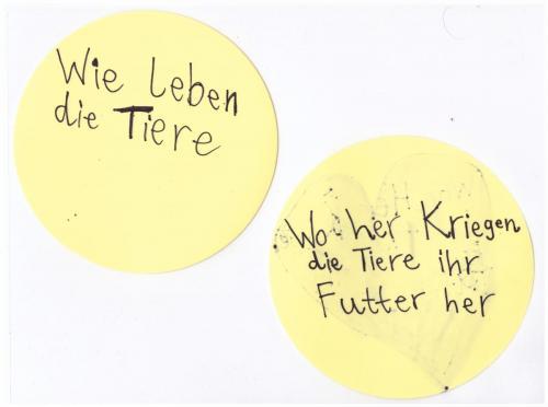 Pfosten_Kreis7