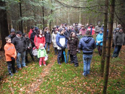 Waldbegehung_Gruppe2_11