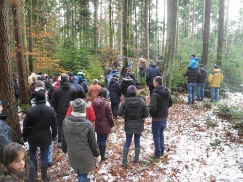 Waldbegehung_Gruppe2_6