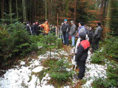 Waldbegehung_Gruppe2_7