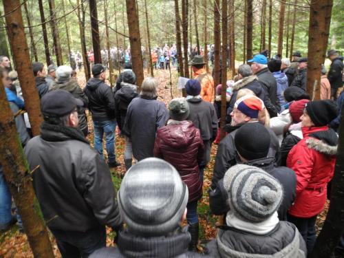 Waldbegehung_Gruppe2_9